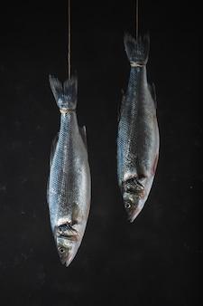 Due pesci freschi della spigola appendono su una corda su una priorità bassa nera