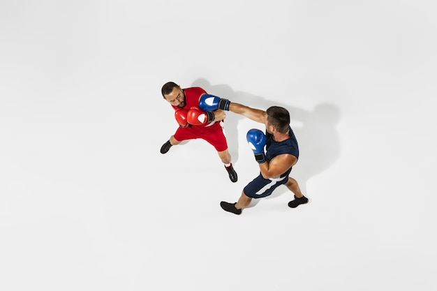 Due pugili professionisti boxe isolati su sfondo bianco studio, azione, vista dall'alto. coppia di atleti caucasici muscolosi in forma combattimenti.