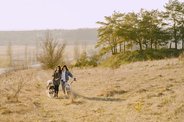 Due ragazze alla moda in un campo soleggiato con i cani