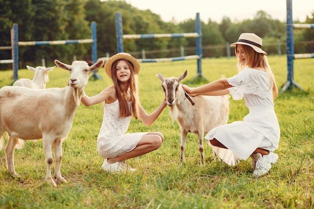 Due ragazze carine in un campo con capre