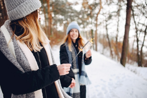 Due ragazze carine in un parco d'inverno