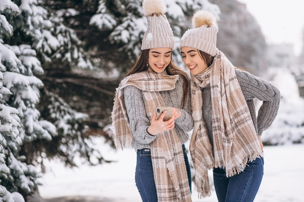 Due ragazze gemelli insieme nel parco di inverno
