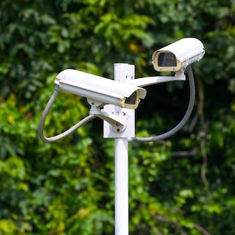 Due videocamere di sorveglianza di sicurezza vicino alla foresta verde