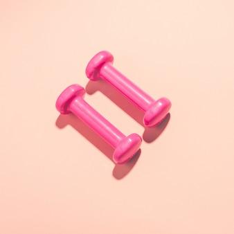 Dumbbells piatto giaceva su sfondo rosa