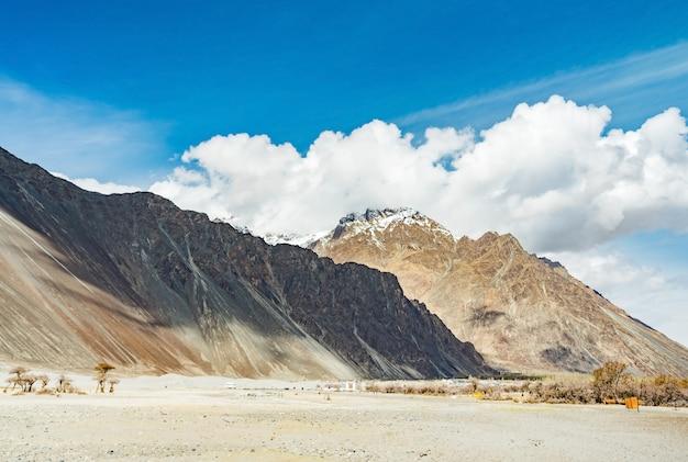 Duna di sabbia del dessert con luce del giorno e cielo blu nuvoloso, valle di nubra in leh ladakh, india del nord