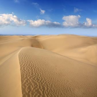 Dune del deserto di sabbia a maspalomas gran canaria