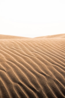 Dune di sabbia calde arancioni in estate nel delta del fiume