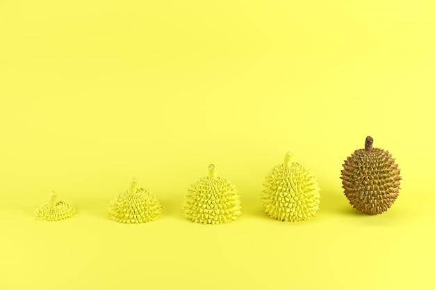 Eccezionale durian maturo intero e fette di durian dipinto in giallo su sfondo giallo