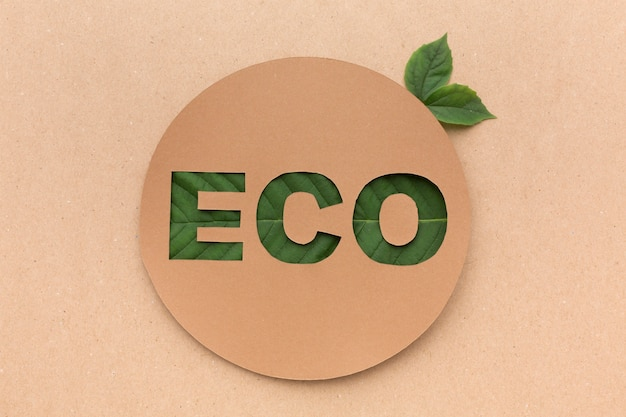 Eco segno con foglie