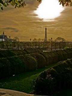 Eiffel dal louvre