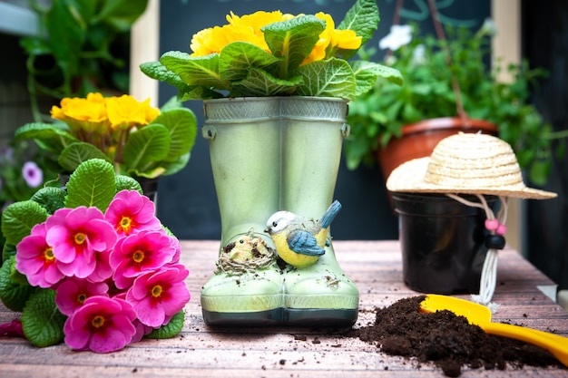 Elegante concetto di giardinaggio, piantare pianificazione, floricoltura. set di accessori da giardino e fiori