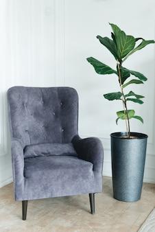 Elegante sedia comoda vicino al muro bianco, accanto a una pianta verde, copyspace. interno