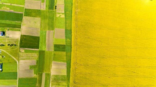 Elicottero del quadrato del drone sul campo di grano giallo