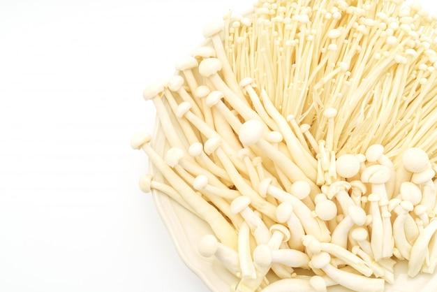 Enoki funghi e faggio funghi su sfondo bianco.