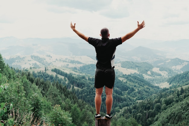 Equipaggi la condizione del ceppo in montagne dell'estate al tramonto e godendo della vista della natura