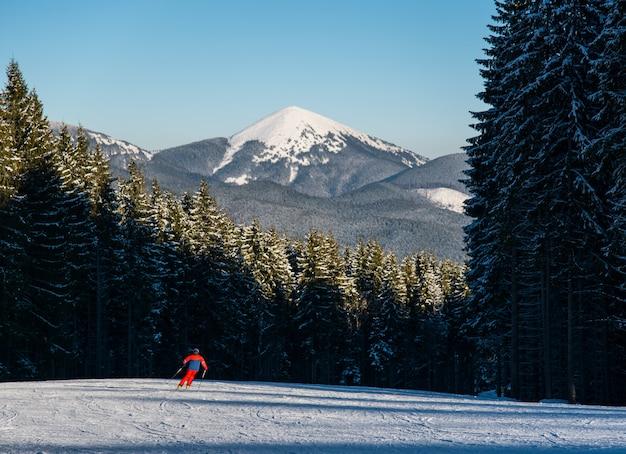 Equipaggi lo sciatore che scia in discesa alla stazione sciistica contro la foresta e la montagna possente