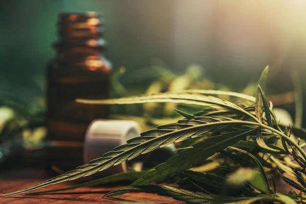 Erba di cannabis e foglie con estratti di olio in barattoli. concetto medico
