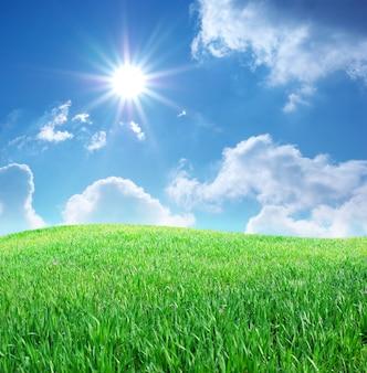 Erba e cielo blu profondo