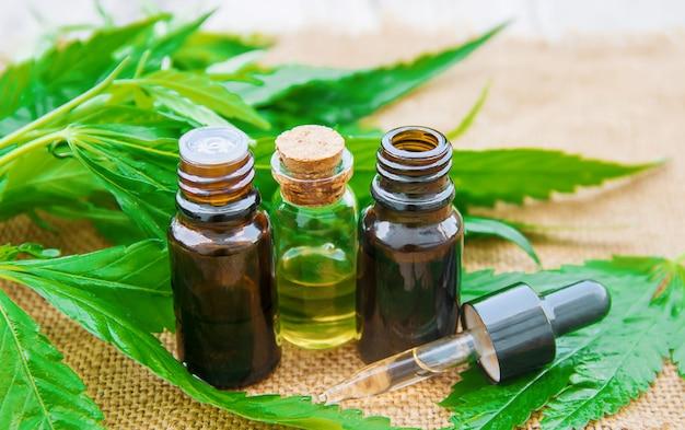 Erba e foglie di cannabis per il trattamento
