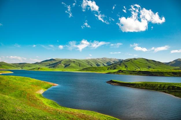 Erba verde con lago