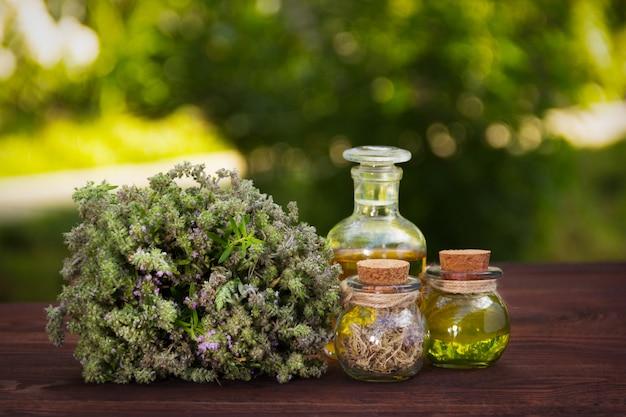 Erbe aromatiche fresche e olio naturale