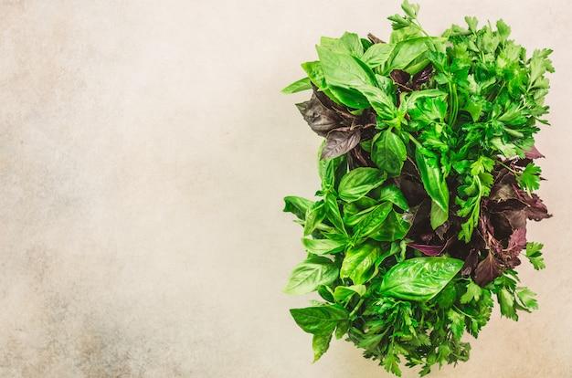 Erbe aromatiche fresche verdi - timo, basilico, prezzemolo su fondo grigio. banner collage, cornice alimentare.
