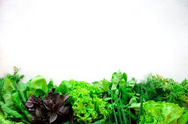 Erbe aromatiche fresche verdi - timo, basilico, prezzemolo su fondo grigio. cornice alimentare, design del bordo.