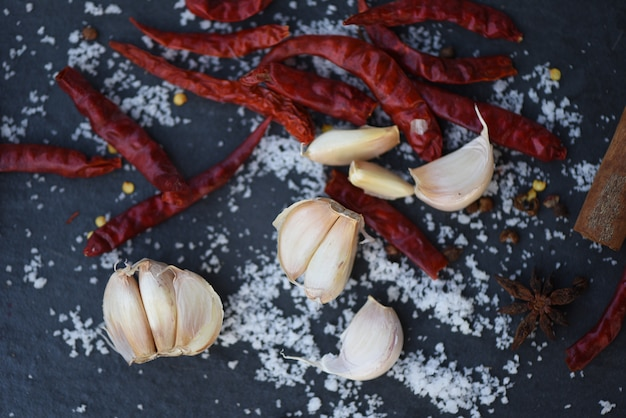 Erbe e spezie secche dell'aglio dei peperoncini rossi con sale su fondo scuro