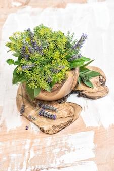 Erbe fresche aneto timo salvia menta lavanda basilico alimento sano