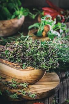 Erbe fresche - timo, rosmarino, peperoncino, menta, prezzemolo