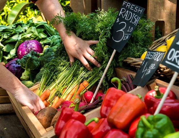 Erbivendolo che prepara il prodotto agricolo fresco organico al mercato dell'agricoltore