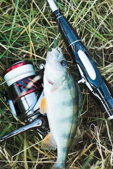 Esca da pesca bloccata nella bocca del pesce sull'erba verde con la canna da pesca