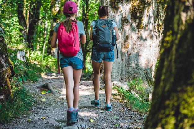 Escursioni nella foresta