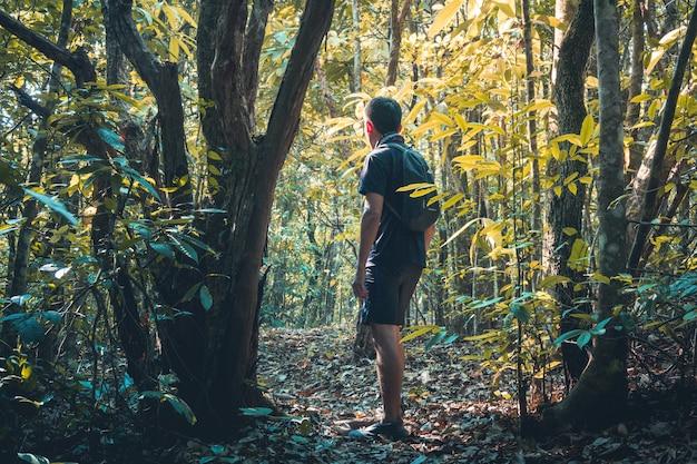 Escursionismo uomo che cammina in montagna concetto di stile di vita di viaggio sullo sfondo summer expedit