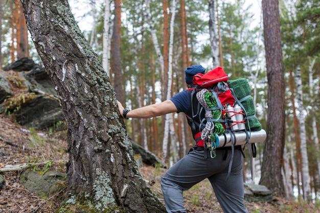 Escursionista con uno zaino nella foresta. vista posteriore.