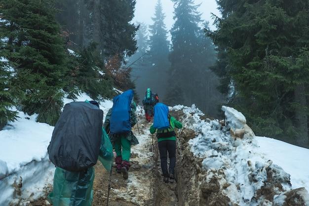 Escursionisti che attraversano foreste di montagna innevate