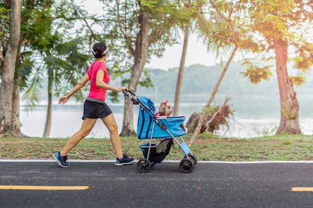 Esercizio della donna che cammina nel parco con il piccolo cane in passeggino.