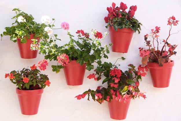Esposizione del vaso di fiori imbiancata del villaggio di andalusia spagna