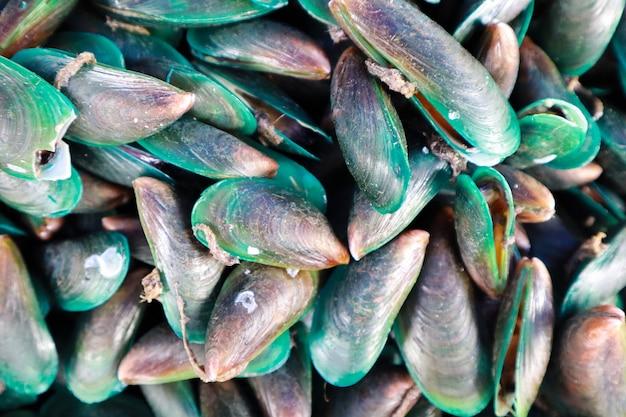 Esposizione di vongole crude fresche dei cardi di mare da vendere al mercato dei frutti di mare