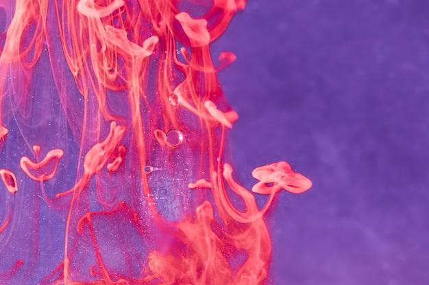 Estratto di gelatine di mare sott'acqua in olio
