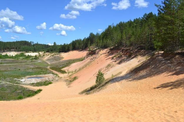 Estrazione di sabbia. carriera nel settore. vecchia cava nella foresta