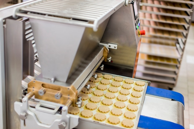 Fabbrica di biscotti