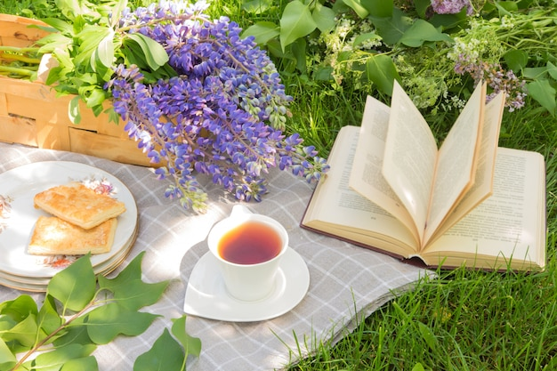 Faccia un picnic con il libro di cottura del tè su un plaid in un parco su un concetto di festa di viaggio dell'erba verde