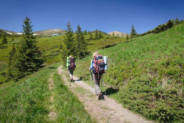 Facendo un'escursione con i bastoni in montagne carpatiche