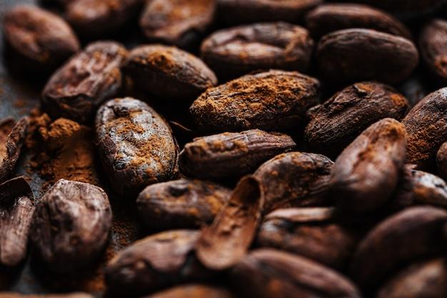 Fagioli del cacao sul primo piano del piatto