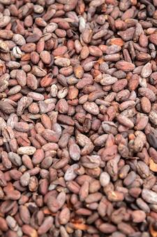 Fagioli di cacao crudi