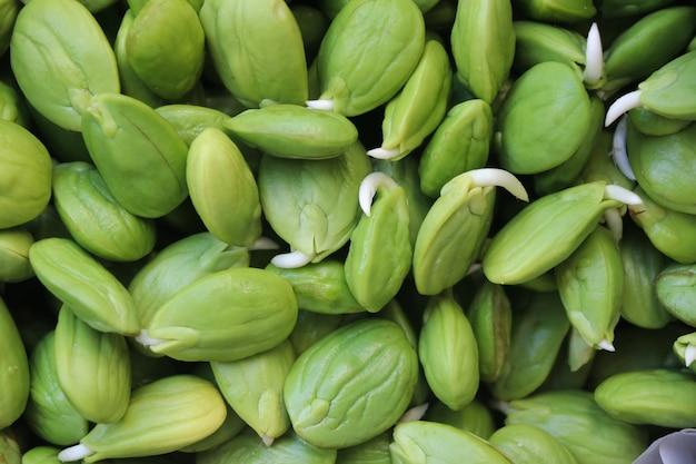 Fagioli freschi di crescita sato e cibi crudi per la nutrizione biologica vegetale puzzolente delizioso per la cucina asiatica