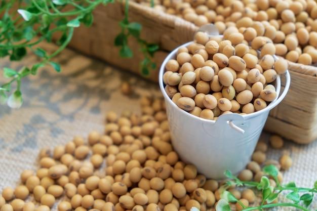 Fagiolo di soia nel secchio bianco e scatola marrone su tela di sacco. pulire i cibi sani per mangiare bene.
