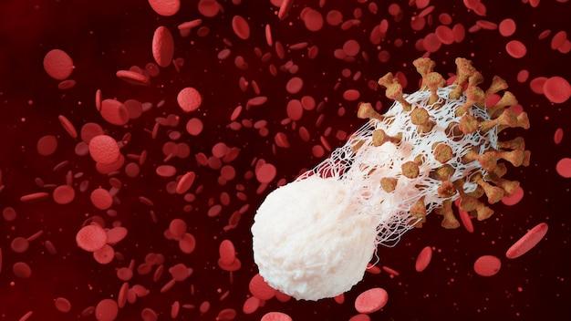 Fagocitosi immunitaria dei globuli bianchi coronavirus covid-19 infezione delle cellule di malattia 3d rendering illustrazione