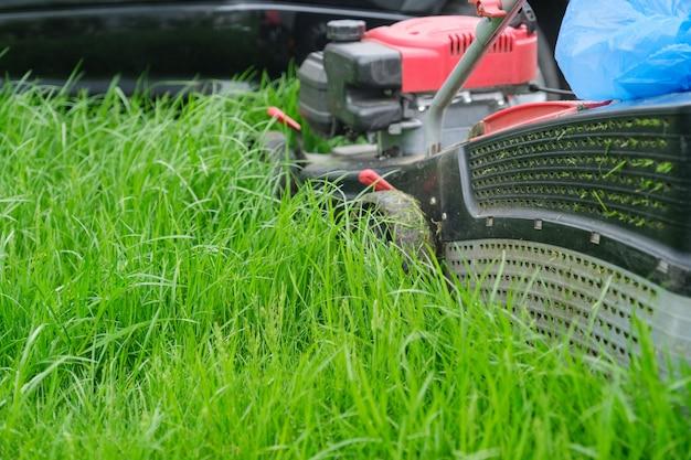 Falciatrice da giardino che taglia erba verde, giardiniere con la falciatrice funzionante